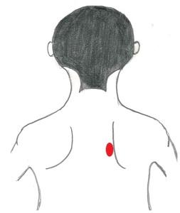 肩甲骨内側